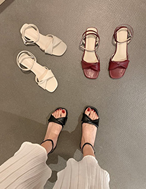 Fashion Red Wine Buckle Mid-heel Sandals