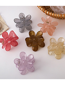 Rasguño De Pelo De Flores De Color Transparente