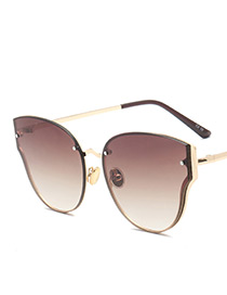 Fashion Champagne Wing Shape Decorated Pure Color Sunglasses