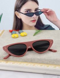 Fashion Darl Purpl Cat Eyes Shape Design Simple Glasses