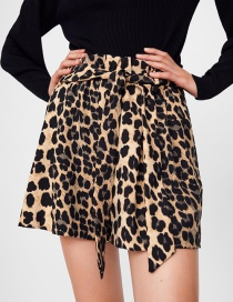 Fashion Leopard Animal Print Print Shorts