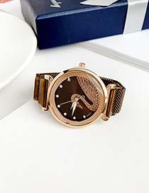 Fashion Dark Brown Alloy Ladies Watch