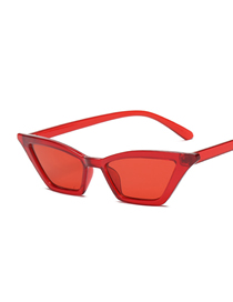 Fashion Red Box Through Red Small Box Cat Eye Sunglasses Plastic Hinge