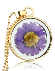 Fashion Gold + Purple Chrysanthemum Natural Chrysanthemum Specimen Phase Box Necklace
