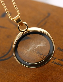 Fashion White K Round Dandelion Dandelion Seed Glass Bottle Phase Box Necklace
