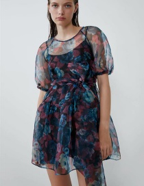 Fashion Color Printed Transparent Dress (two-piece)
