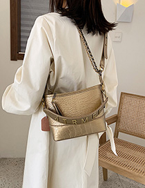 Fashion Gold Chain Shoulder Messenger Bag