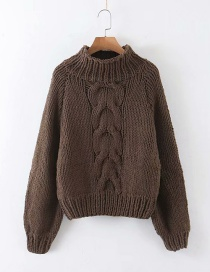 Fashion Brown Twist Small Turtleneck Sweater