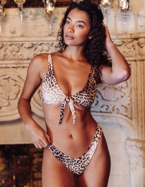 Fashion Leopard Print Printed Knotted Triangle Split Swimsuit