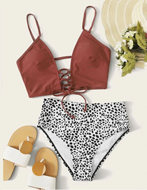 Fashion Brown Top White Leopard Point Pants Leopard Printed High Waist Tether Contrast Swimsuit