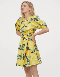 Fashion Fruit Printing V-neck Dress With Fruit Print Tether Straps