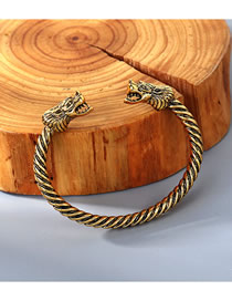 Fashion Kc Gold Dragon Head Embossed Spiral Bracelet