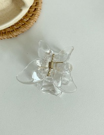 Fashion Transparent Butterfly Tray Hair Pearl Clip