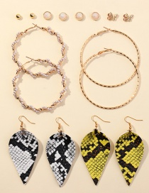Fashion Color Mixing Circle Pearl Leopard Earring Set