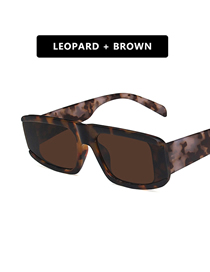 Fashion Leopard Tea Chips Small Frame Rectangular Resin Wide Temple Sunglasses