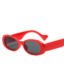 Fashion Scarlet Oval Small Frame Resin Sunglasses