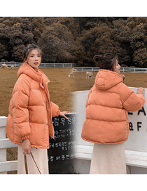Fashion Grapefruit Short Hooded Solid Color Thick Cotton Jacket