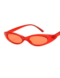 Fashion Red Frame Transparent Oval Cat Eye Drop-shaped Sunglasses
