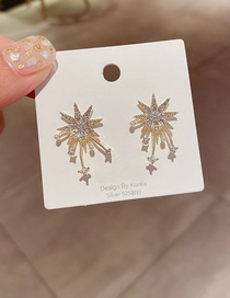 Fashion Gold Color Micro-set Zircon And Gold-plated Copper Earrings