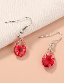 Fashion Red Handmade Dried Flower Resin Drop Earrings