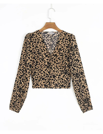 Fashion Khaki Leopard Print Leopard Print V-neck Long Sleeve Top