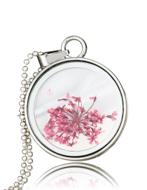 Fashion Rose Red Dried Flower Plant Necklace