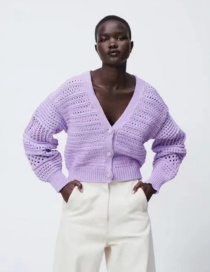 Fashion Purple Mesh Pearl-breasted Knitted Sweater