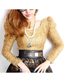 Fashion Gold Color Tassel Pendant Decorated Snakeskin Design Pu Wide belts