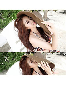 Fashoin Dark Coffee Spring and summer Seaside Beach Straw Sun Hats