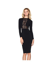 Sexy Black Hollow Out Lace Decorated Long Sleeve Tight Dress