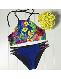 Retro Multi-color Flower Pattern Decorated Simple Design Bikini