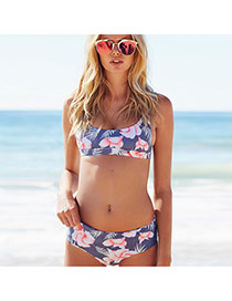 Sexy Pink Painting Flower Pattern Decorated Simple Swimsuit